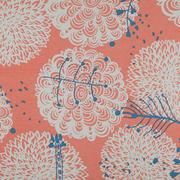 Chrysanthema coral