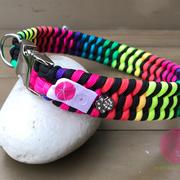 Halsband mit Aluklickschnalle