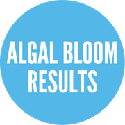 https://floridadep.gov/dear/algal-bloom/content/algal-bloom-sampling-results