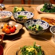家庭菜園 野菜 キッチンは実験室 畑