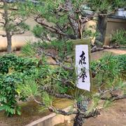 芳心会 初点茶会 京都 大徳寺 YAMATO 野田