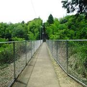【】上原町 西中学校通学路(通称へび道)フェンス越しの草木の剪定で明るく】上原町170付近の池