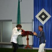 Rafael van der Vaart ( HSV Profi )