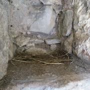 Schutz des Clifford's Tower in York durch Bird Free Gel. Vorher: Nische mit Taubennistplatz.