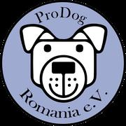 25 Tiere in Rumänien über Pro Dog Romania eV