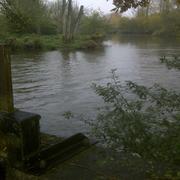 Vannage sur les étangs La Grenouillère Frise Camping pêche Somme