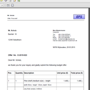 DirectFile opens immediately (here: offer document)