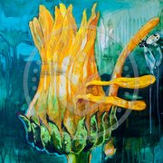 Ringelblume 50x50 cm