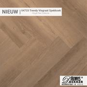 04733 Trendy Visgraat Spekkoek