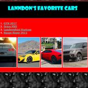 LanndonM