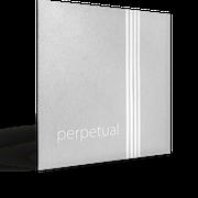 "PIRASTRO ""perpetual"" Cello"
