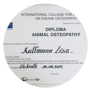 Diploma Animal Osteopathy – Lisa Kullmann
