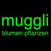 Frauennetz.Meggen_Jahreskarte Verkehrshaus und Tierpark Goldau bei Blumen Muggli Meggen