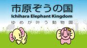 行ってみたいな☆象の国~♪