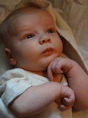 Fichtennest Baby 1