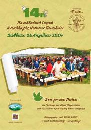 Le 14e festival Peliti aura lieu le 26 avril prochain