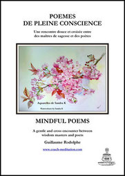 poemes pleine conscience  mindfulness poems guillaume rodolphe