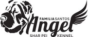 Familia Santos Angel Sharpei kennel; sharpei kennel; FCI; UKU; sharpei dog poster; creative dog pet advert; most beautiful dog pet poster; luxury dog pet cat poster advertising; sharpei dog; pitomnik Familia Santos Angel Sharpei; krasivaya reklama zhivotn