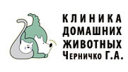 Veterinarnaya Klinika domashnih zhivotnih Galiny Chernichko Kiev Ukraina