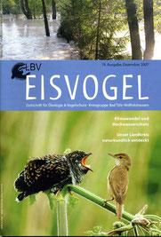 19. Ausgabe, 2007