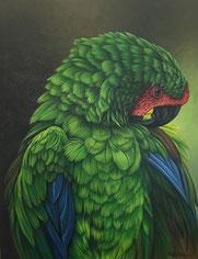 papagei, original tierbild, online galerie