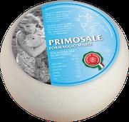 maremma misto mucca vacca bovino pecora formaggio caseificio toscano toscana spadi follonica forma intera 1200g 1,2kg italiano origine latte italia primosale fresco