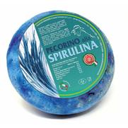 maremma pecorino pecora formaggio caseificio toscano toscana spadi follonica forma intera italiano origine latte italia nuovi sapori saporito aromatiche aromatizzato stagionato tartufo