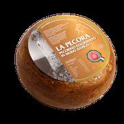 maremma pecora formaggio pecorino caseificio toscano toscana spadi follonica forma intera crosta rossa rosso italiano origine latte italia stagionato modo antico