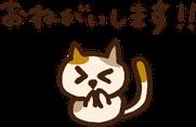 お願いする猫のイラスト
