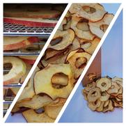 Lapins friandises artisanales bamm paris