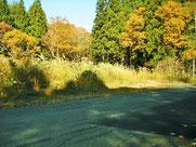 長野県上水内郡信濃町大字野尻字黒姫山、黒姫保健休養地内の別荘地。