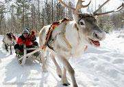 Le père noël et son renne sera à Châtellerault ce weekend !