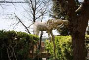 Индивидуальная экскурсия в музей Дали и замок Гала