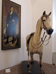 Schloss Nymphenburg, Lieblingspferd Ludwigs II. im Marstallmuseum