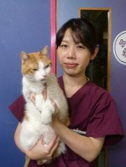 エルム動物病院 杉並区 荻窪 動物病院 日本獣医