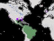 Karte zur Verbreitung der Moschusente.