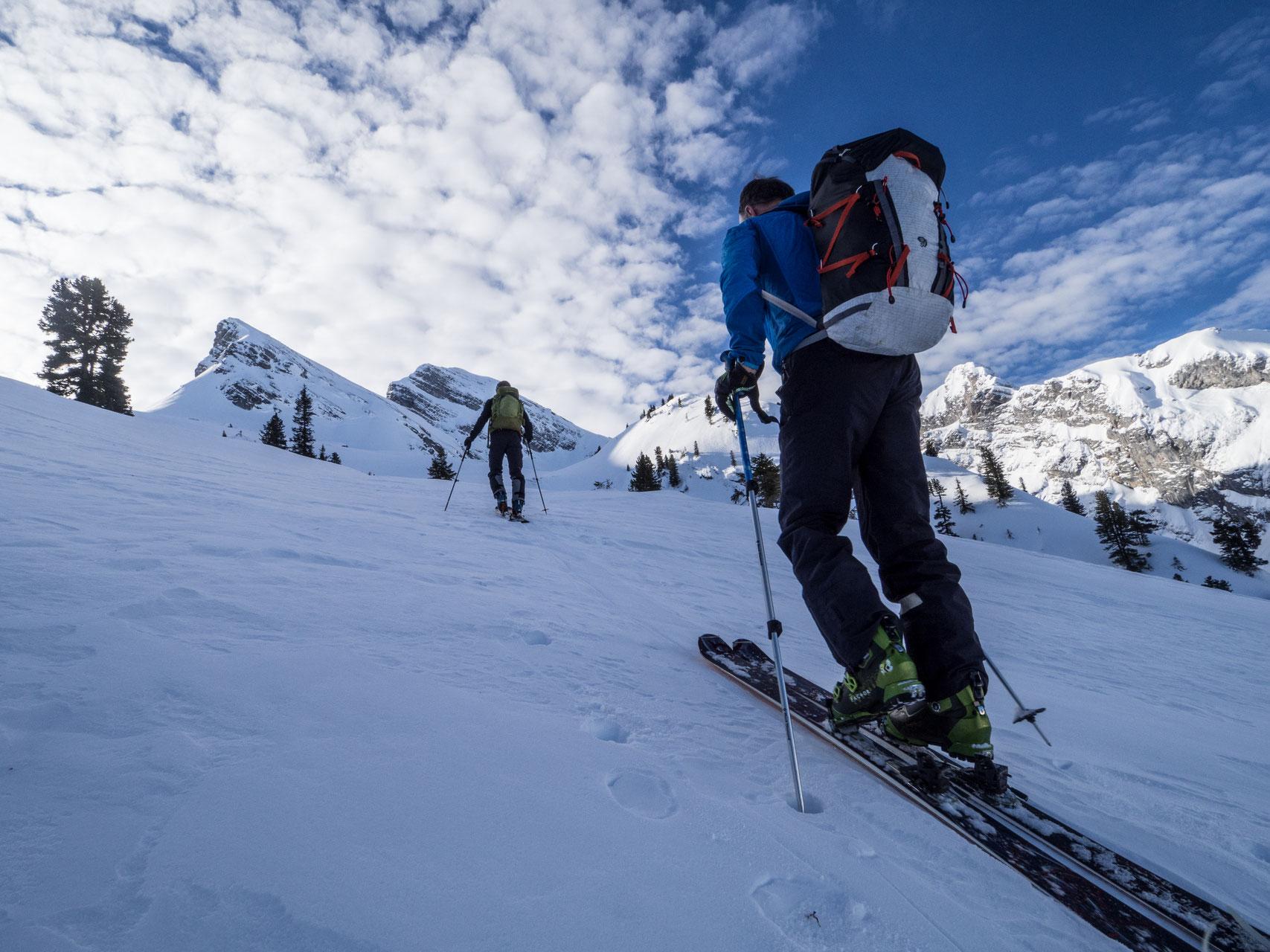 Klettergurt Für Skitouren : Starke seilschaft klettergurte im test bergsteiger magazin