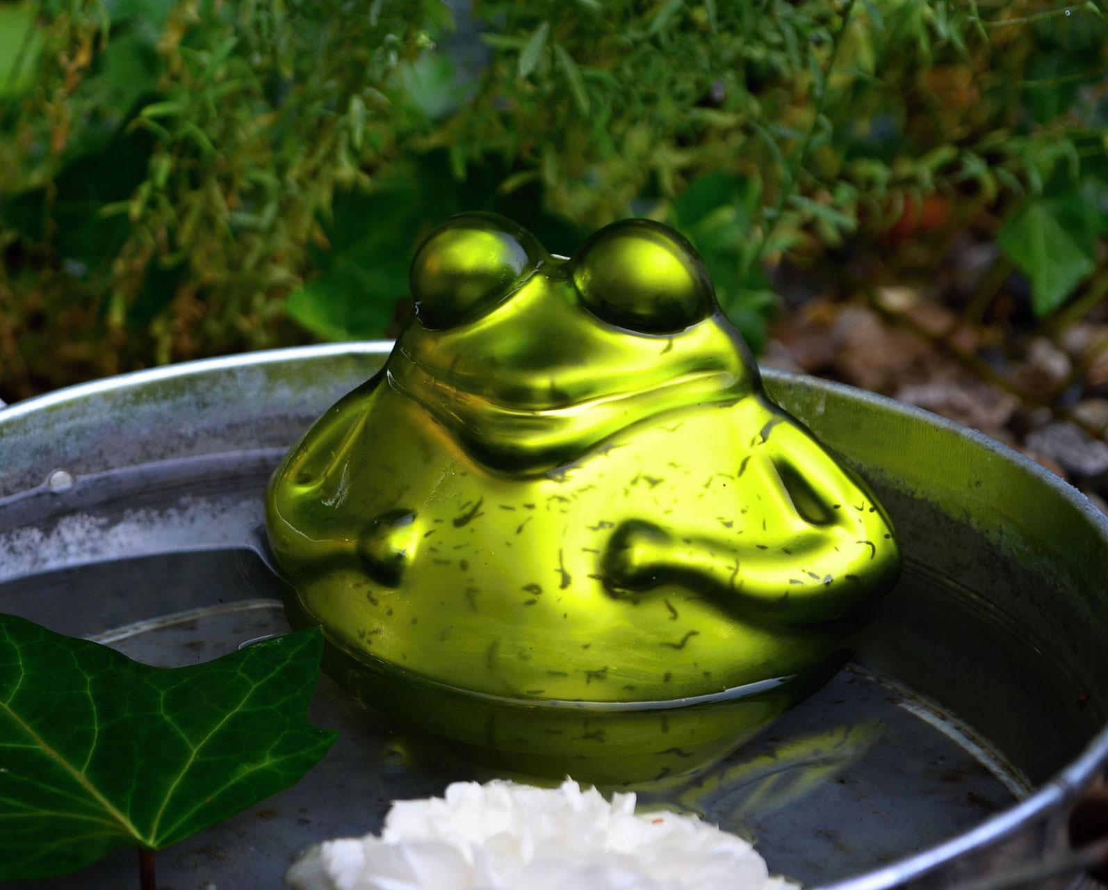 schwimmfrosch schwimmfr sche glas frosch schwimmender frosch schwimmfrosch gartenteich www. Black Bedroom Furniture Sets. Home Design Ideas