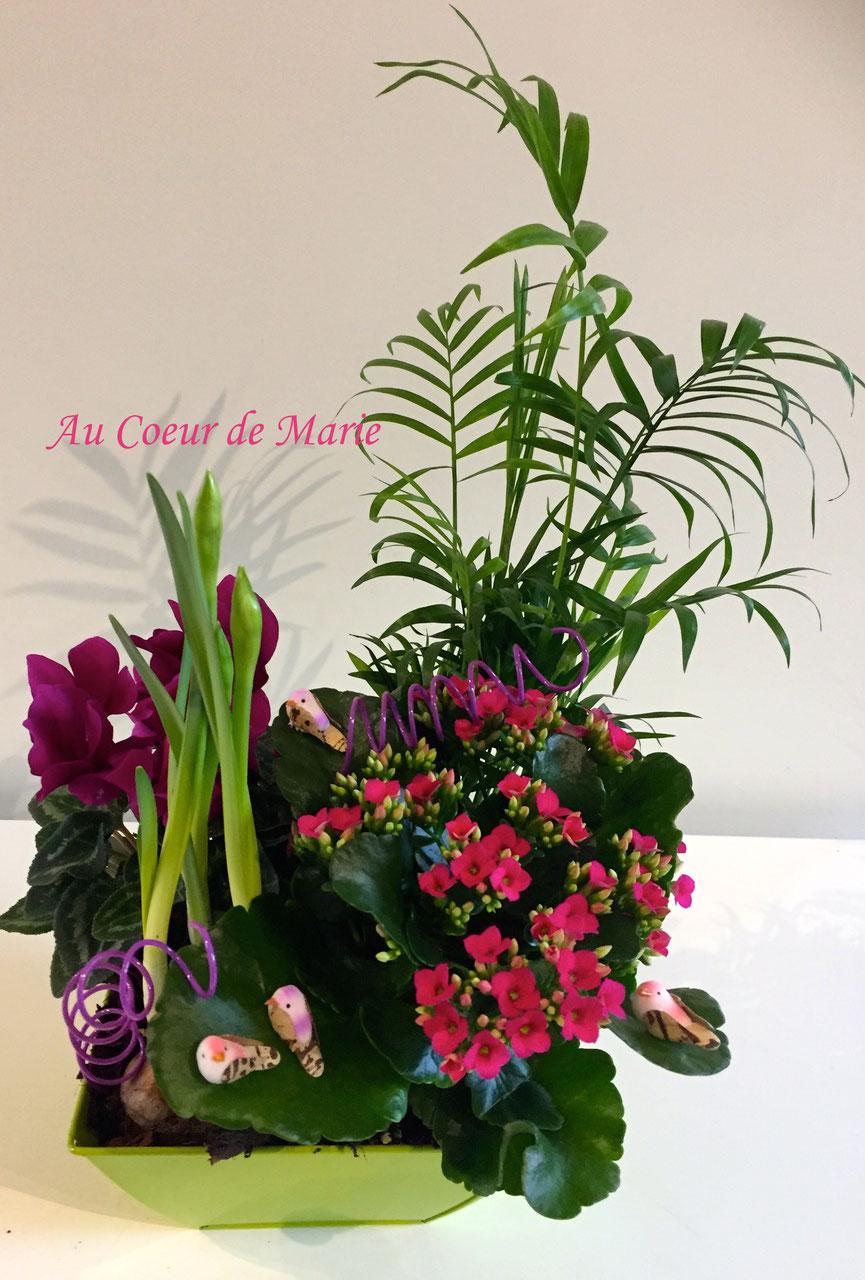 Plantes fleuries au coeur de marie fleuriste menucourt for Plantes commande en ligne