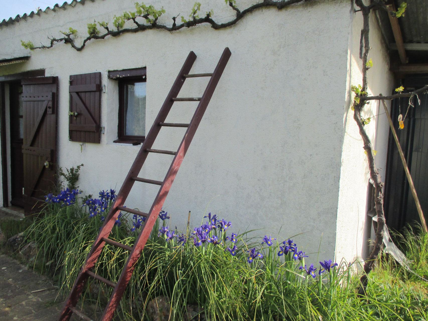 Les couleurs de la cabane, en Anjou