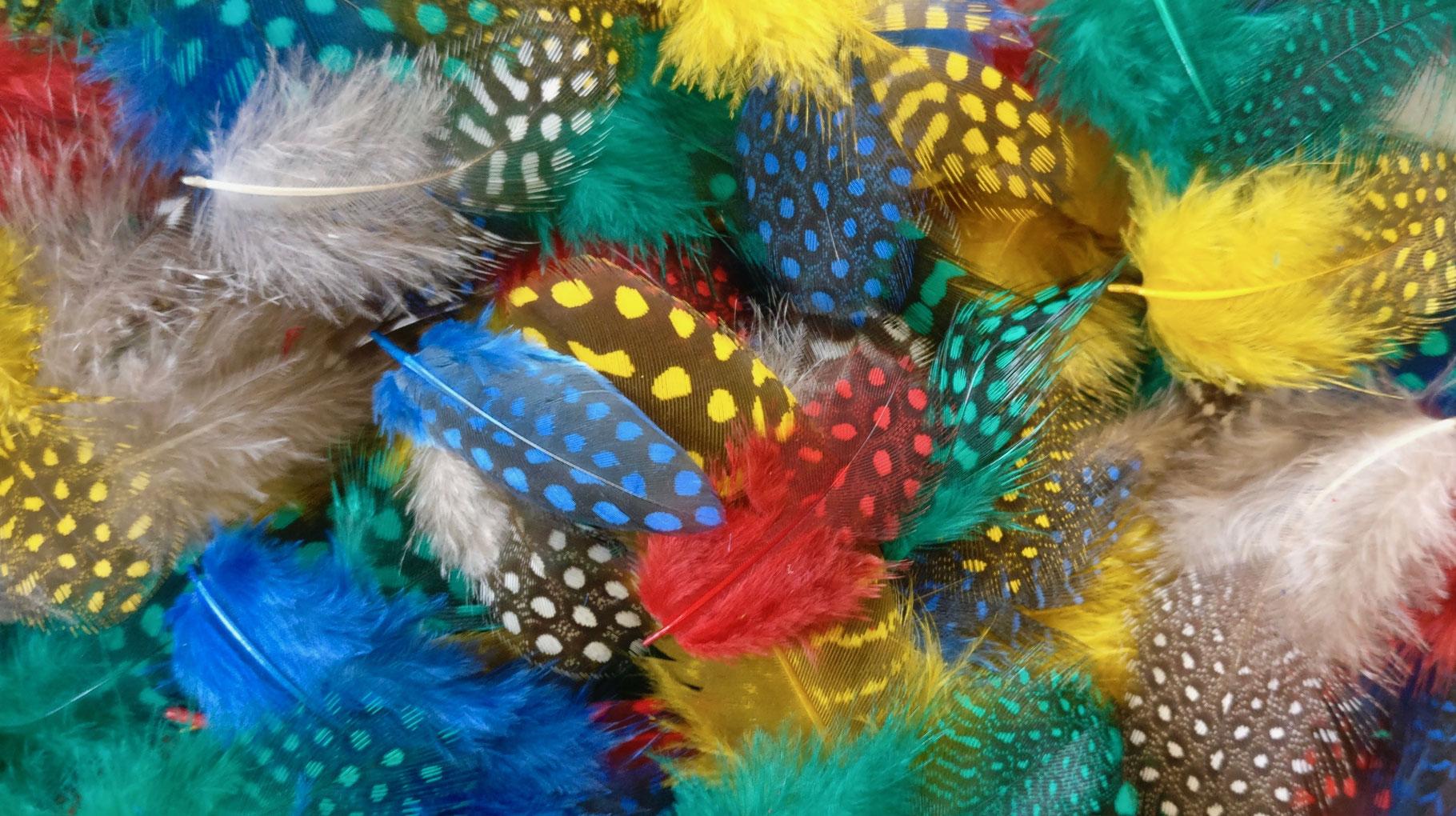 Perlhuhnfedern naturfarben