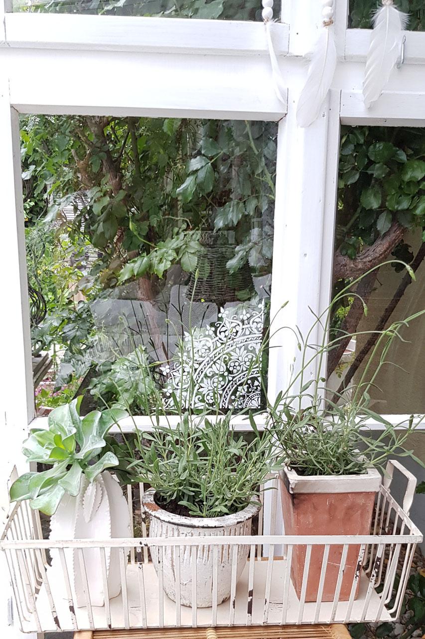 Wohnaccessoires & Garten - Qunst & Qrempel: Shabby chic ...