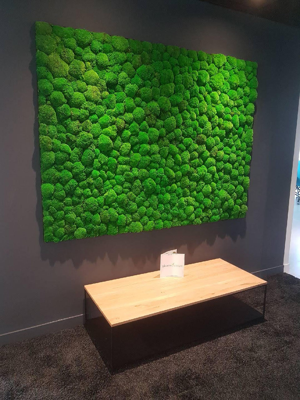 mur v g tal mousse boule vegetal indoor mur v g tal stabilis. Black Bedroom Furniture Sets. Home Design Ideas