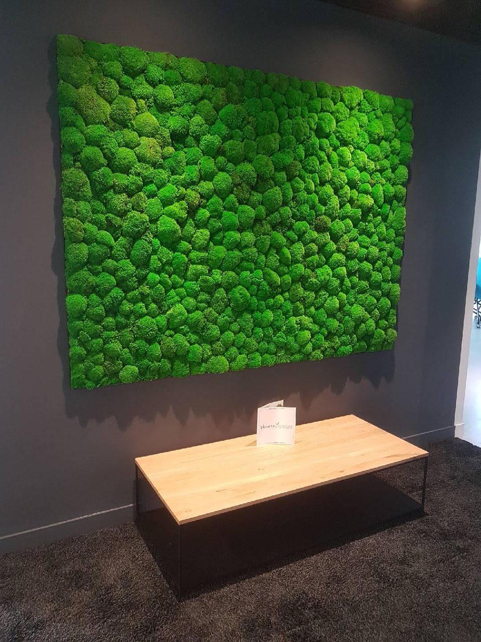 mousse boule vegetal indoor mur v g tal stabilis. Black Bedroom Furniture Sets. Home Design Ideas