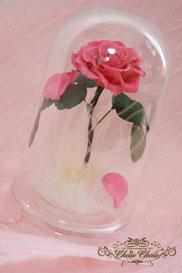 ディズニー 美女と野獣 一輪の薔薇 ドームアレンジ ピンク フラワーギフト