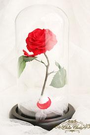 プロポーズ ディズニーランドホテル キャラクタールーム 美女と野獣 魔法の薔薇 一輪の薔薇 ガラスドーム  プリザーブドフラワー オーダーフラワー シュシュ