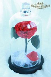 ディズニー 美女と野獣 一輪の薔薇 ガラスドーム プロポーズ プリザーブドフラワー