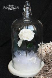 ディズニー 美女と野獣 一輪の薔薇 ガラスドーム 白薔薇 フラワーギフト