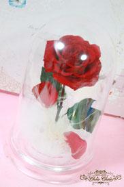 ディズニー 美女と野獣 一輪の薔薇 ドーム プロポーズ フラワーギフト