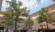 arbre artificiel et ornement végétal